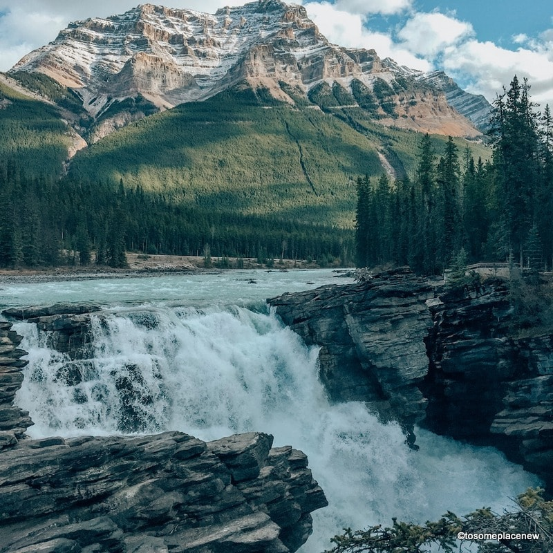 Athabasca Falls - Get the ultimate Edmonton to Jasper Itinerary and guide, with a comprehensive list of things to do in Jasper and places to visit in Jasper National Park.