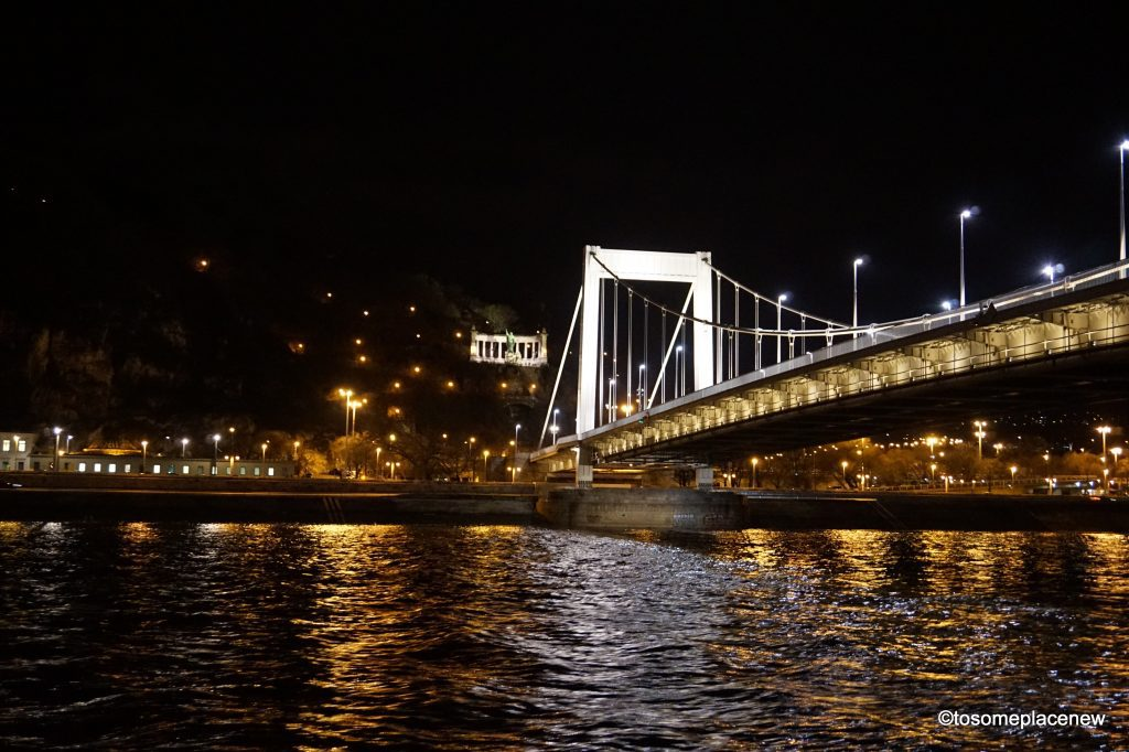 Review of the Danube dinner cruise - stunning views of the bridges and the Parliament in Budapest, all in nights glory whilst enjoying a 3 course meal