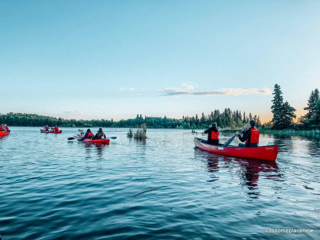 A quick guide to the Elk Island National Park - home to the American bisons, located just an hour away from Edmonton, the capital city of the Canadian province of Alberta. Get lost in the wilderness, camp out, bird watch, star gaze and so much more including a sunset tour #canada #travelalberta #exploreedmonton