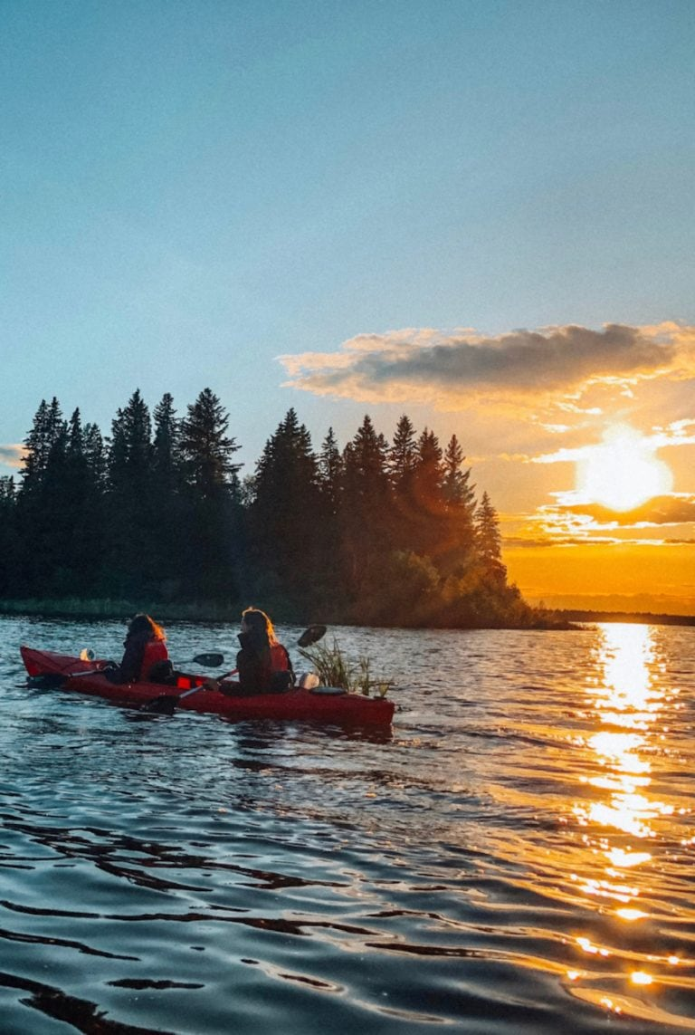 Things to do in Elk Island National Park Edmonton – Bisons & Sunset Tour