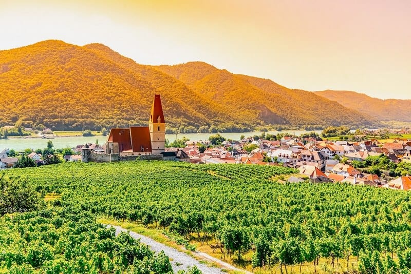 Sunny day in Wachau Valley. Landscape of vineyards and Danube River at Weissenkirchen, Austria.