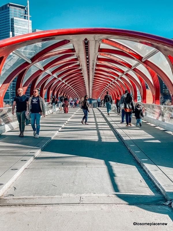Calgary downtown Peace Bridge