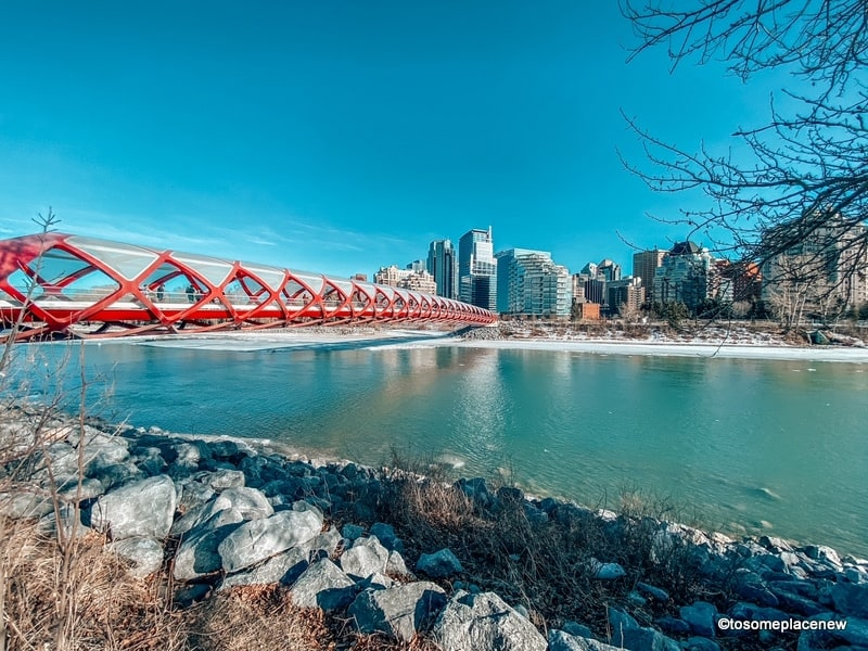 View of Peace Bridge on Bow River