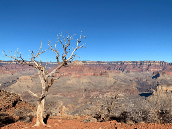 Grand Canyon Day Hikes - South Kaibab Trail