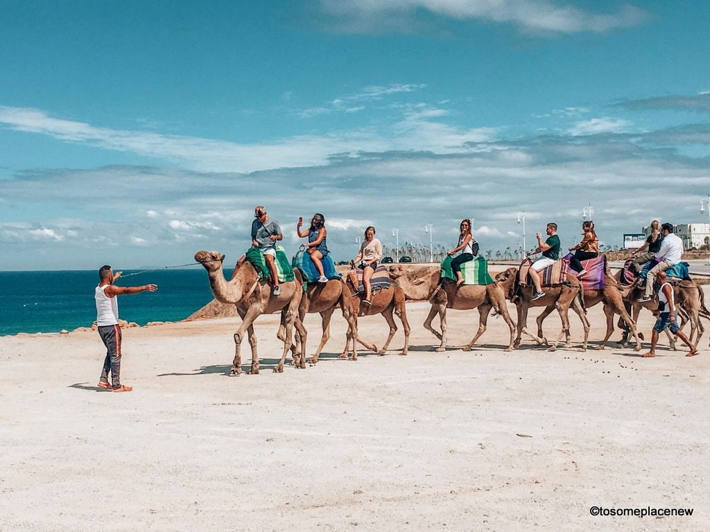 Camel ride in Tangier