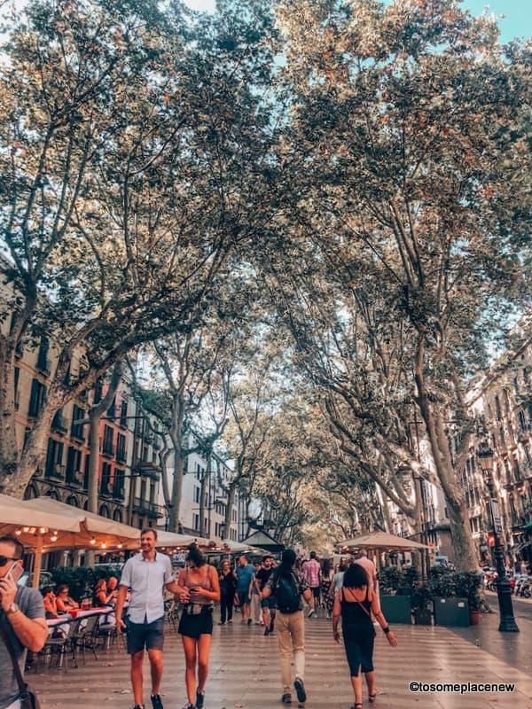 Lanes of Barcelona