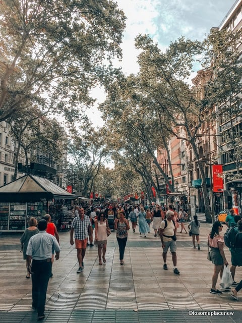 2 days in Barcelona Itinerary to explore the city highlights and cultural gems.Get safety & sightseeing tips plus food guide for Barcelona Itinerary 2 days.