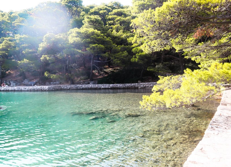 Island of Mljet Day trips from Dubrovnik