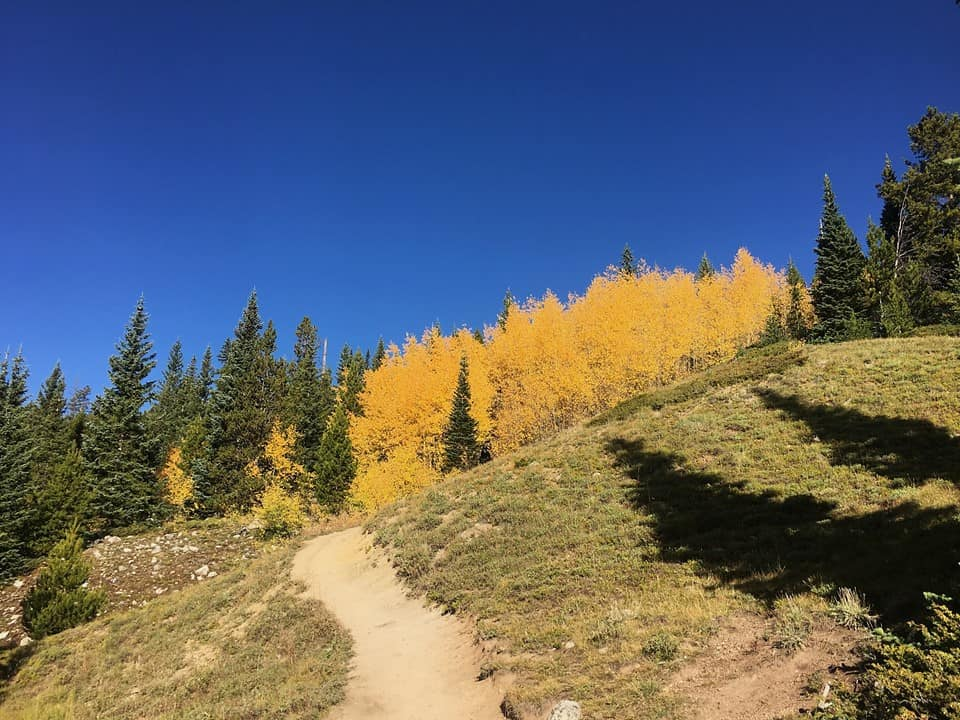 Quandary Peak Colorado Fall colors