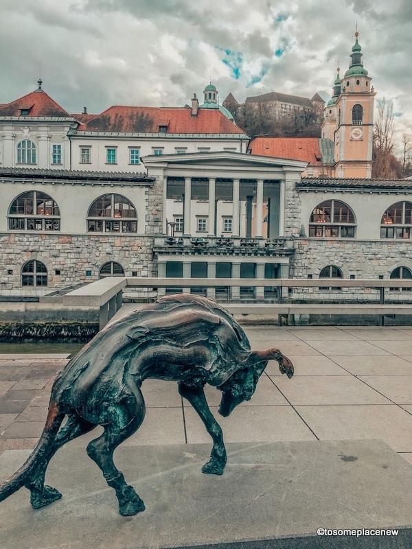 Central Market Ljubljana Views from the embarkment