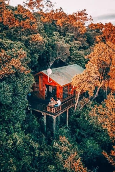 Treehouses one of the Best Airbnbs in the US