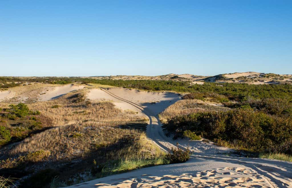 Dunes in Provincetown East Coast USA Road Trips