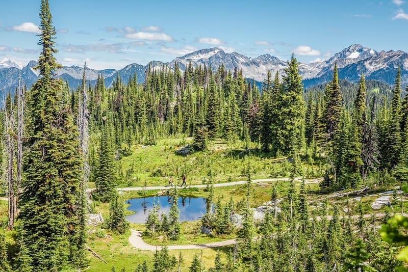 Revelstoke National Park, BC, Canada