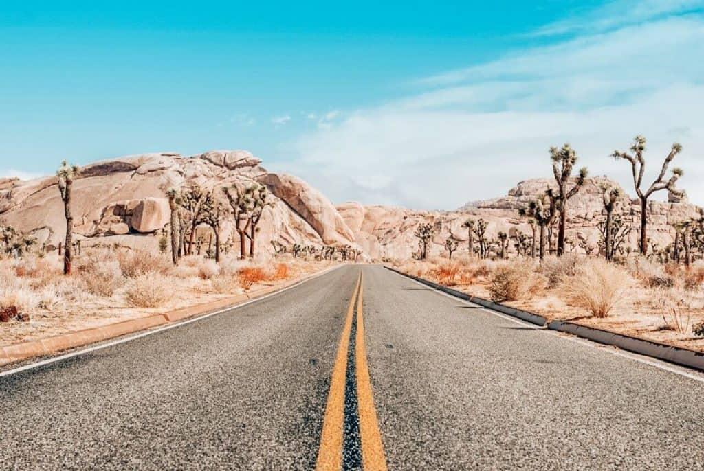Road to Joshua Tree