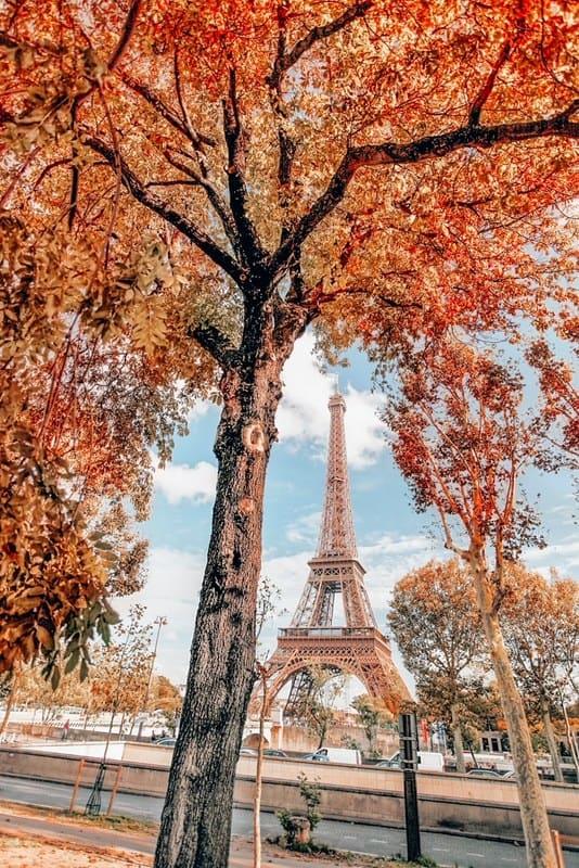 Eiffel Tower in the fall Paris