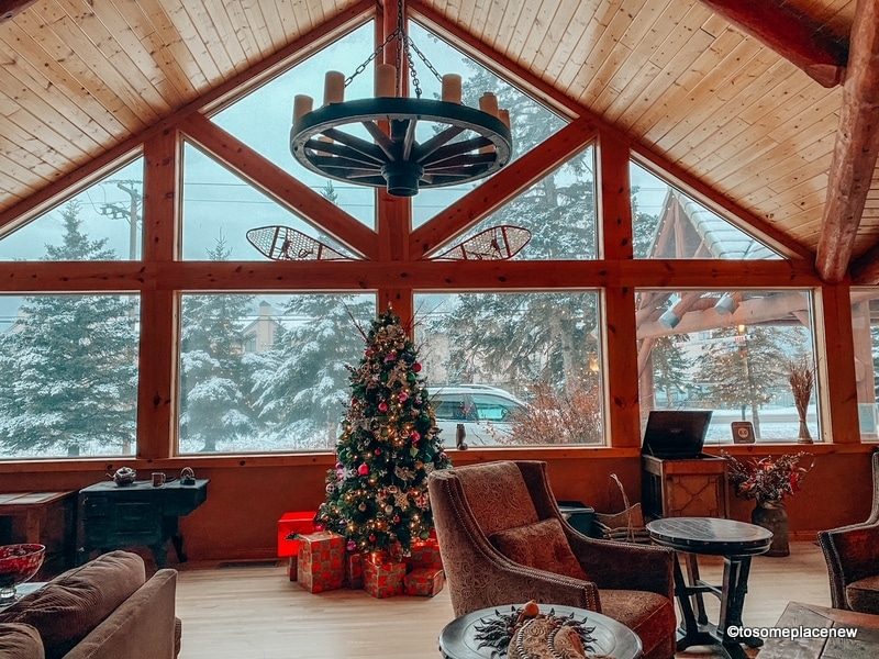 Staycation in Canmore during Christmas