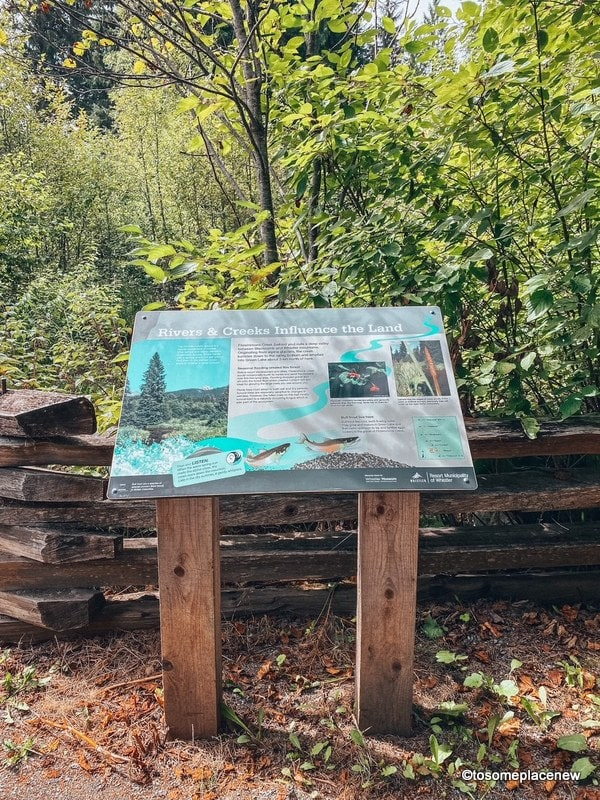 Fitzsimmons Creek Accessible Nature trail