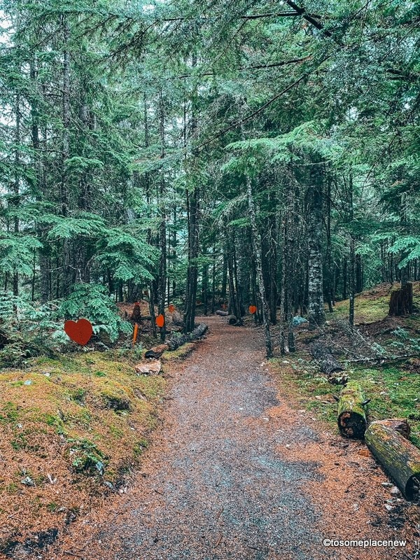 Squamish Lil'wat Cultural Centre forest trail